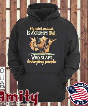 My spirit animal Is a grumpy Owl who slaps annoying people hoodie