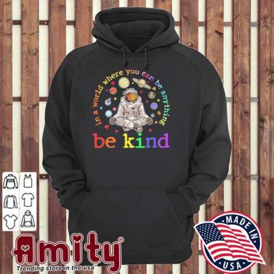 Be kind In a world where you can be anything hoodie