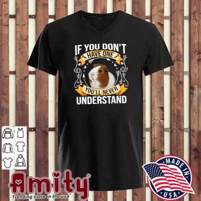 Guinea Pigs If You Don't Have One You'll Never Understand Shirt v-neck