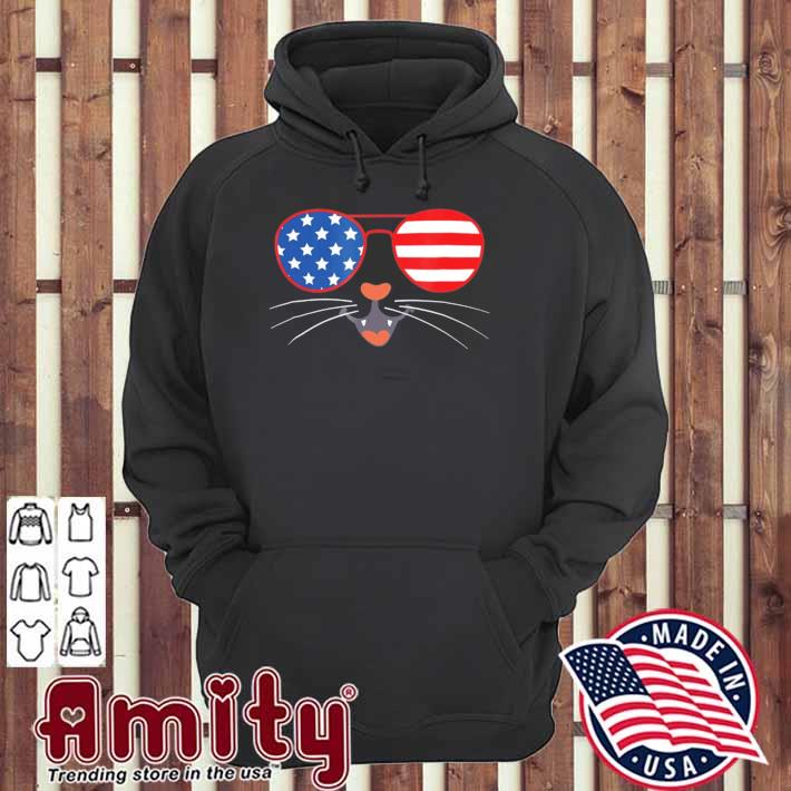 4th of july cute kitty cat American flag sunglasses whiskers hoodie